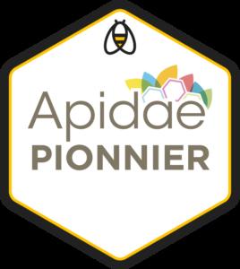 agence-web-pionnier-apidae